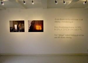 Utställningar 2008